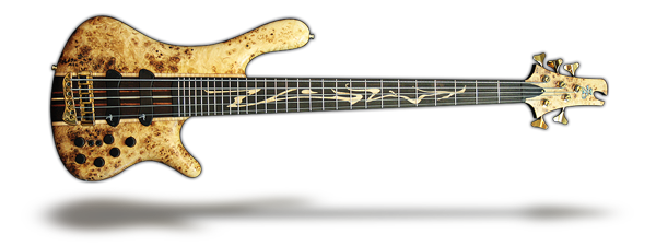 Prodigy LE bass guitar for Obsession Collection category