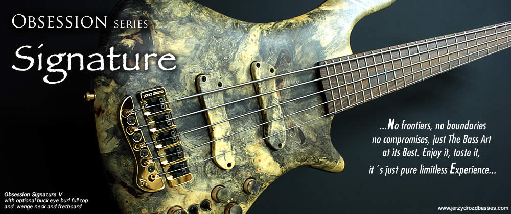 Signature_bass_guitar