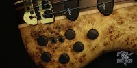 jerzy-drozd-prodigy-limited-edition-5string-bass-guitar-57312-8
