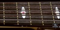 jerzy-drozd-siracusa-bass-guitar-12th-fret-silver-rose-gold-rose-ruby-inlay